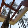 fa köré épített tető